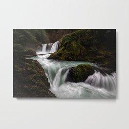 Spirit of the Forest [Horizontal] Metal Print
