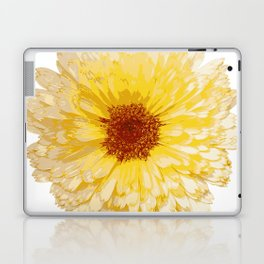 Beautiful Yellow Marigold Vector Isolated Laptop & iPad Skin