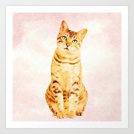 Plaintive bengal kitten saying sorry Art Print