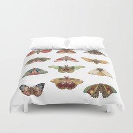 Collector: Moths // Jess Polanshek Duvet Cover
