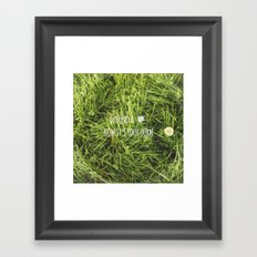 Four Leaf Clover Framed Art Print