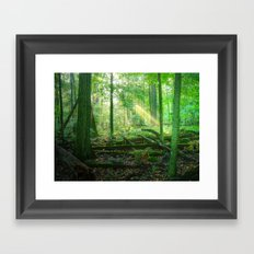 Devil's Lake State Park Framed Art Print
