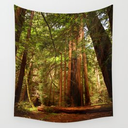 Muir Woods Walkway Wall Tapestry