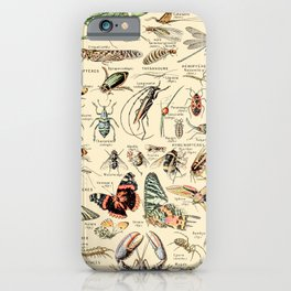 Vintage Insect Identification Chart // Arthropodes by Adolphe Millot XL 19th Century Science Artwork iPhone Case
