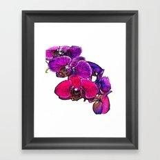 :: Orchids at Breakfast :: Framed Art Print