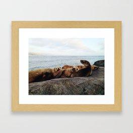 Four-of-a-Kind Framed Art Print