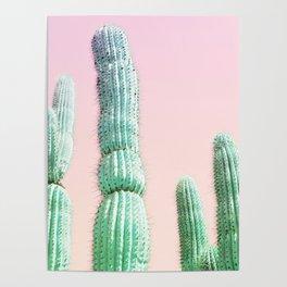 Cactus Pop Poster