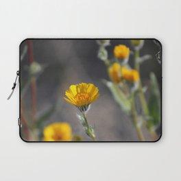 Desert Sunflowers Coachella Wildlife Preserve Laptop Sleeve