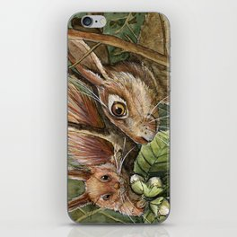 Bunny, squirrel and nuts A068 iPhone Skin
