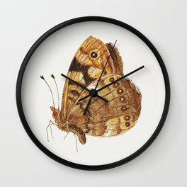 Moth from Insects and Fruits (1660-1665) by Jan van Kessel Wall Clock