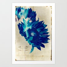 Sapphire Petal Art Print