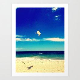 Lonesome Seagul Art Print