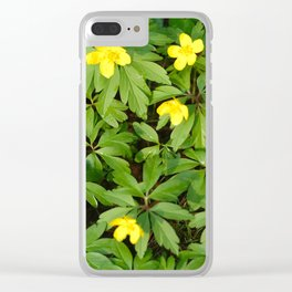 Yellow flowers on Green Clear iPhone Case