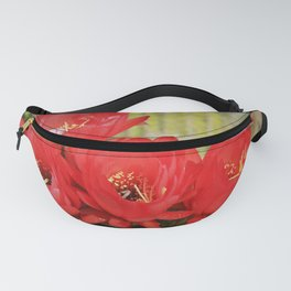 Red Cactus Blooms by Reay of Light Fanny Pack