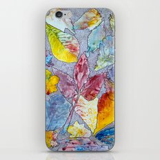 Spring 2012 Drawing Meditation iPhone & iPod Skin