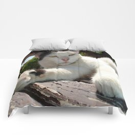 Black and White Bicolor Cat Lounging on A Park Bench Comforters