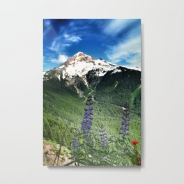 lupines with a view Metal Print