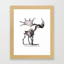 Irish Elk Skeleton Framed Art Print