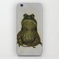 frog iPhone & iPod Skins featuring frog by Diane Nicholson