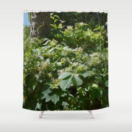 abundant honeysuckle  Shower Curtain