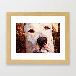 Monster The Dog Framed Art Print