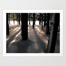 Winter's Promise Art Print