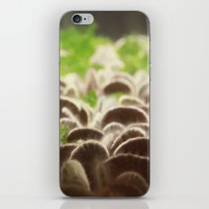 If I had a dollar... iPhone & iPod Skin