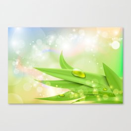pastel colors with green grass and dew Canvas Print