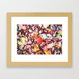 Maple foliage texture Framed Art Print