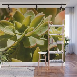 Fat Plant Flowers Wall Mural