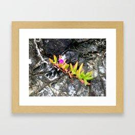 BH Natural Rock Art 4 Framed Art Print