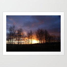 Trees at sunset Art Print