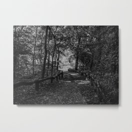 Woods of Central Park Metal Print