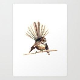 Piwakawaka / Fantail - a native New Zealand bird 2011 Art Print