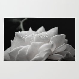 Delicate Rose Nature Photograph Wall Art Rug