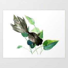 Black Moor Aquarium Fish, Elegant black and green design aquatic black fish Art Print