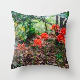 Charleston Hurricane Lily III Throw Pillow