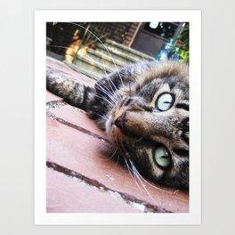 Felix the Cat Art Print