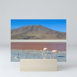 Flamingoes in Bolivia Mini Art Print