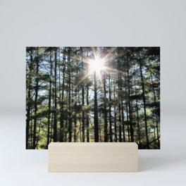 Shining Star Woodlands Mini Art Print