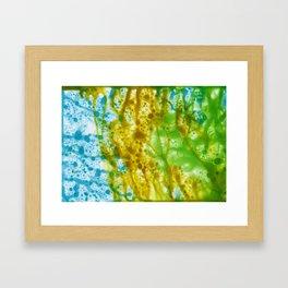 Abstract No. 577 Framed Art Print
