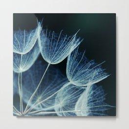 Elegant Dandelion Seeds Macro Abstract Metal Print