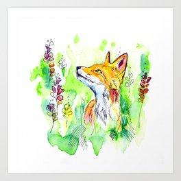 Woodland fox Art Print