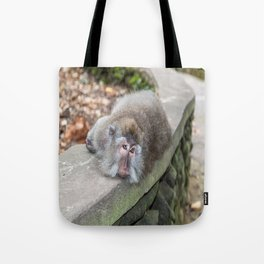 Crab-eating Macaque V (Balinese Monkey) Tote Bag