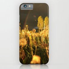 Rainbow Thunderstorm Sunset Through a Field of Dandelions Slim Case iPhone 6s