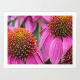 Pink & Spiky Art Print