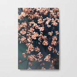 Blue & beige succulent Metal Print