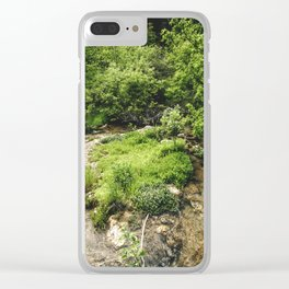 Nature's Beauty Clear iPhone Case