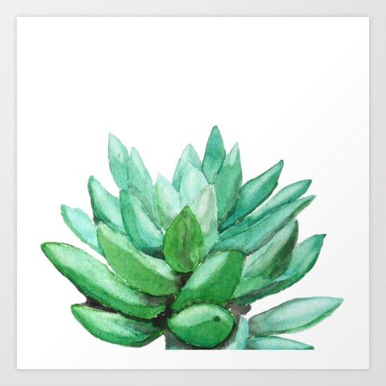 succulent echeveria Art Print