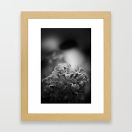 lessons of the lilac Framed Art Print